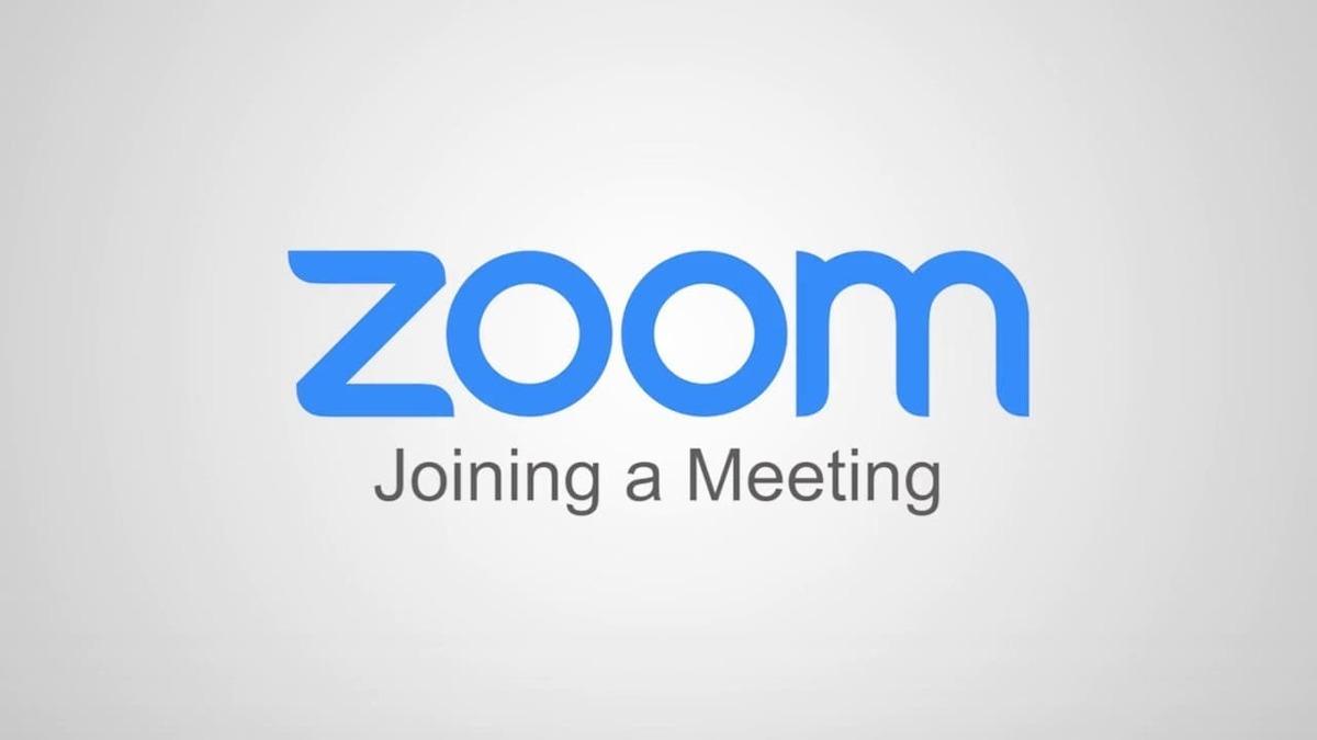 まで Zoom 映る 何人 ZOOMを人数が多くても円滑に会議を回す方法のまとめ